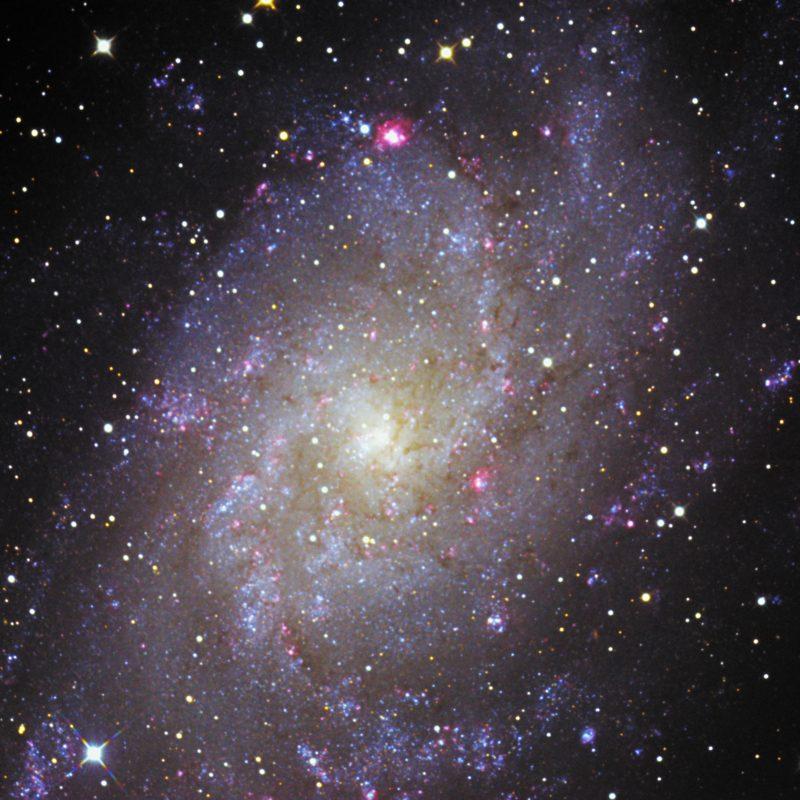 M33 Dreiecksgalaxis 1 800x800 - Galaxien