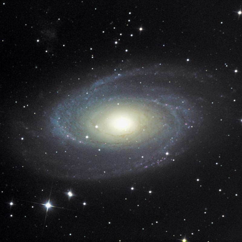 M81 Bodes Galaxis 800x800 - Galaxien