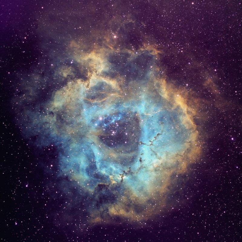NGC2244 Rosettennebel Hubble Palette 800x800 - Emissionsnebel