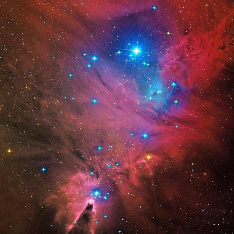 NGC2264 Konus Nebel hochkant neu scaled 800x800 - Emissionsnebel