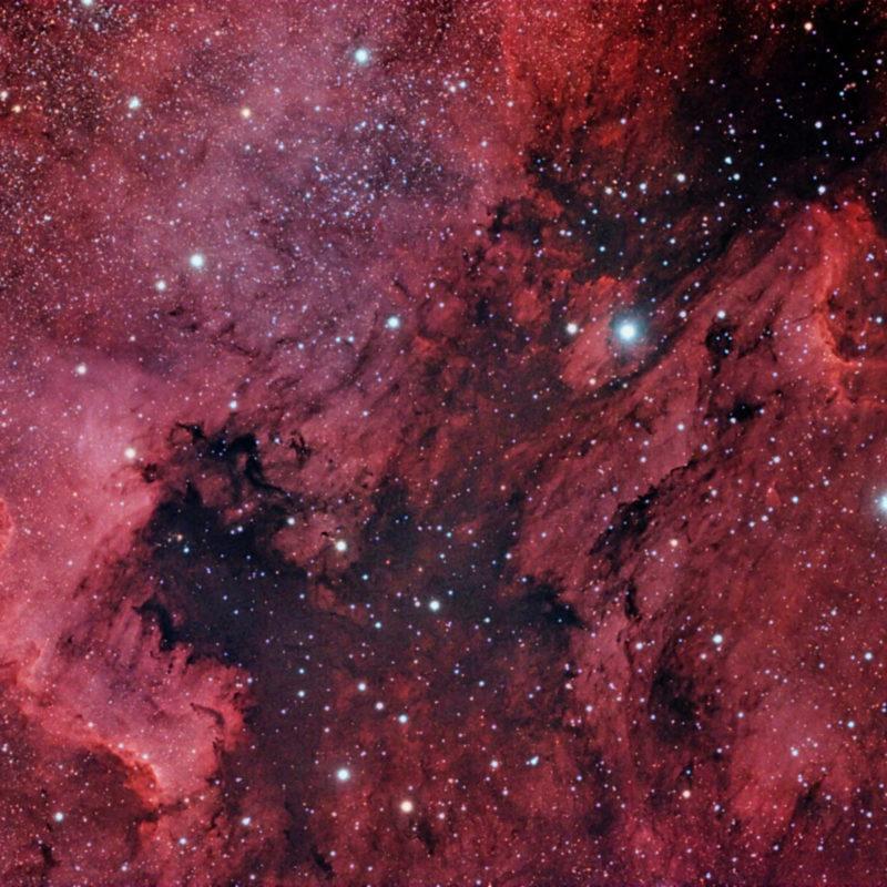 Nordamerika Nebel NGC7000 Pelikan Nebel IC5070 800x800 - Emissionsnebel