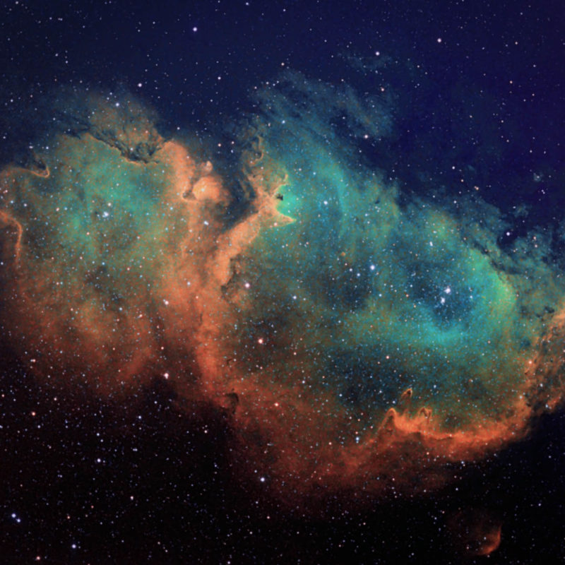 NGC 1848 Seelen nebelneu 800x800 - Emissionsnebel