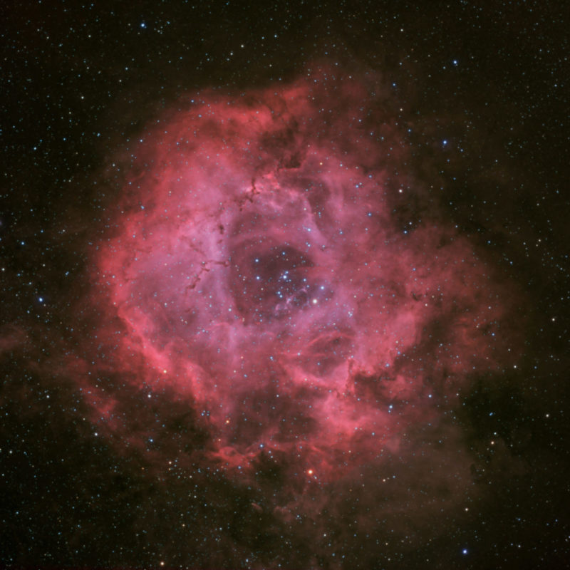 NGC2244 Rosettennebel neu2 scaled 800x800 - Emissionsnebel