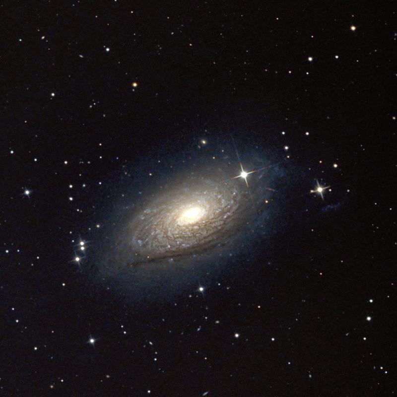 M 63 Sonnenblumen Galaxis 800x800 - Galaxien