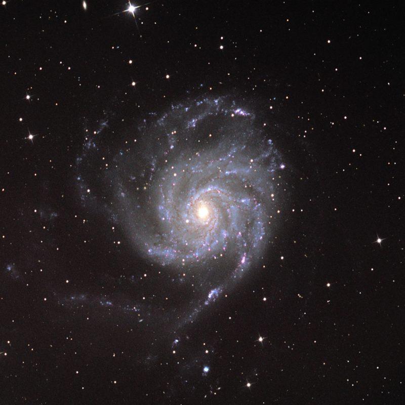 M101 Feuerrad Galaxis 800x800 - Galaxien