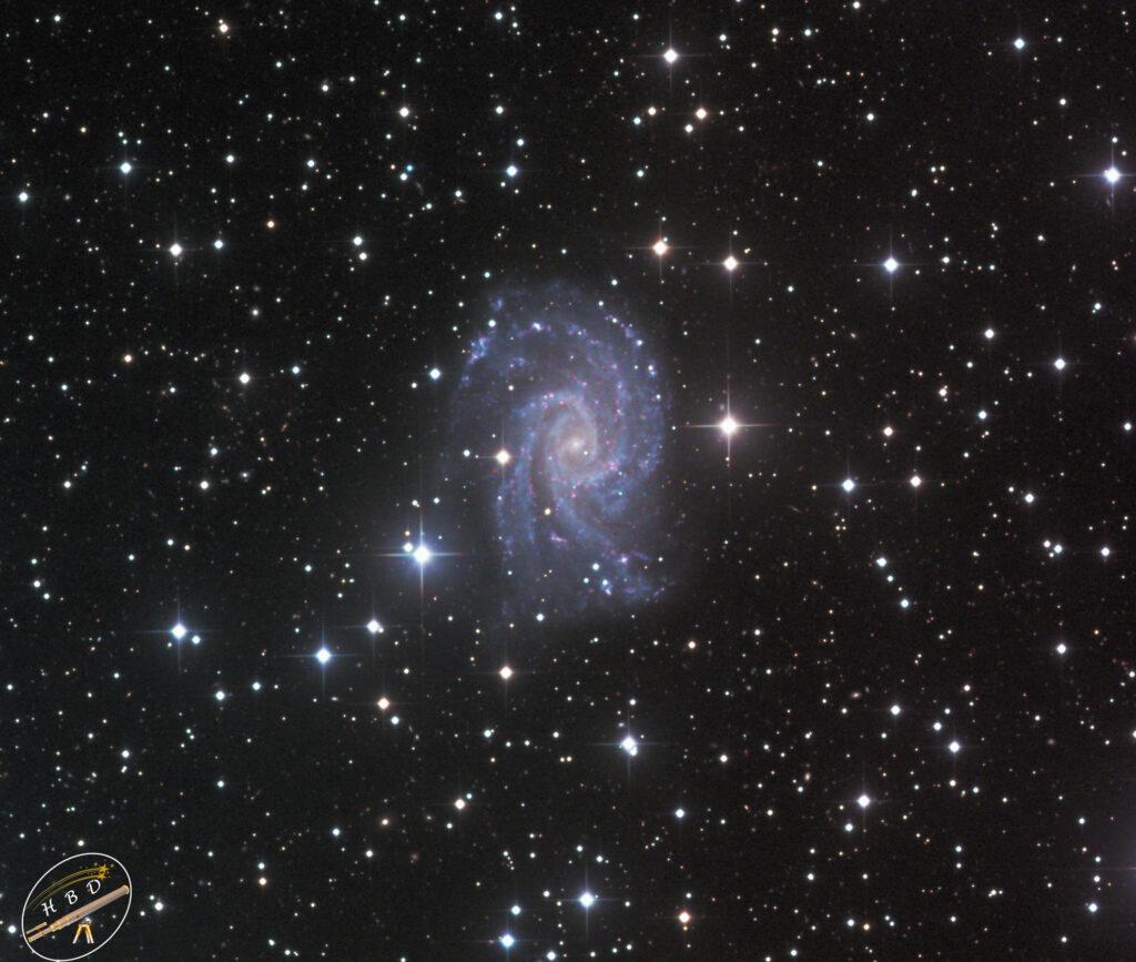 NGC 2835 Galaxisbearbeitet 1024x867 - Balken-Spiralgalaxis